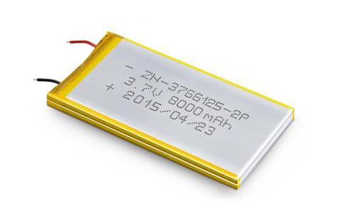 聚合物<a target=_blank href='http://www.dghoppt.cn/'>锂电池</a>.jpg